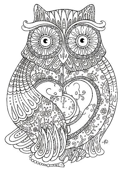 Owl colouring in - Free Colouring Book For Mums