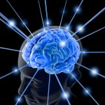 bigstock The Brain 1713803 150x150 - When Your Child Does The Opposite Of What You Ask